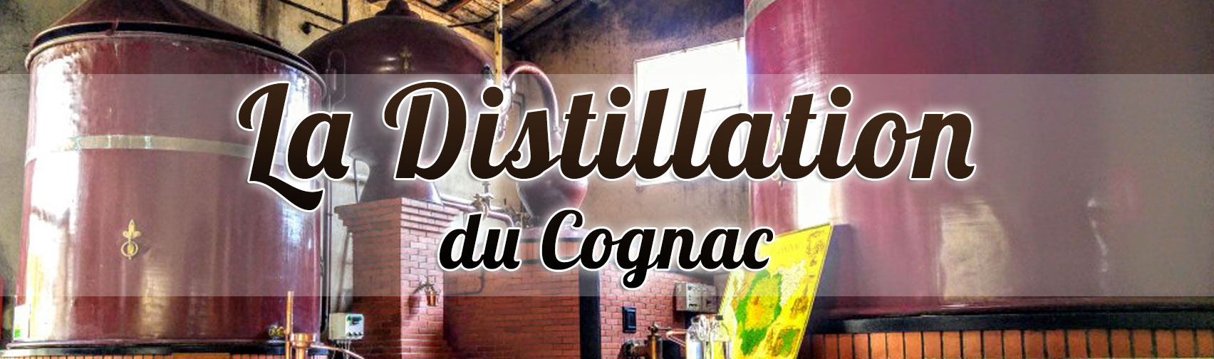La Distillation du Cognac